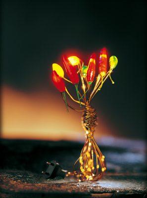 lampe aus draht mit leuchtenden chili